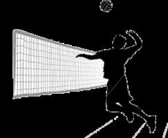 Voleibol World League